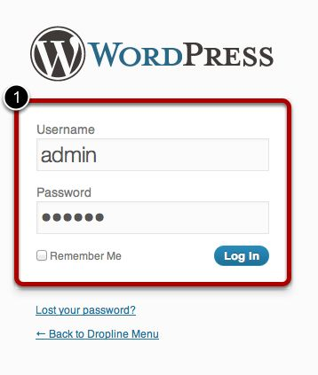 Step_9_Login_to_WordPress.jpg